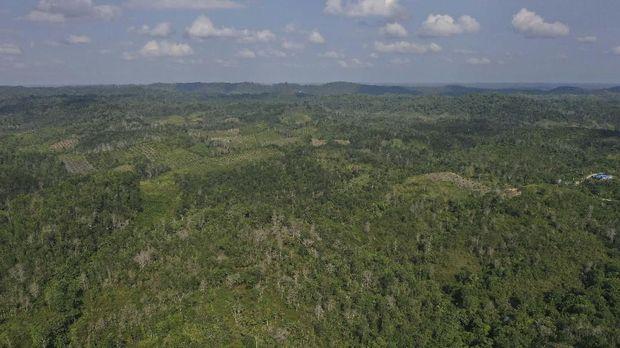 Penajam Paser Utara, Kalimantan Timur, Rabu (28/8), yang merupakan calon ibu kota baru.