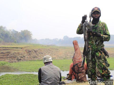 Asyiknya Berburu Ikan Gabus dengan Senapan Paser di Sungai Citarum