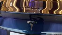 Tikus Gigit Kabel Mobil Tesla, Biaya Perbaikannya Rp 72,5 Juta
