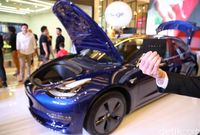 Blue Bird hingga Hotman Paris Naksir Tesla Paling Murah