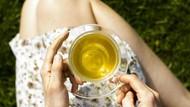 Minum Saffron Jadi Tren, Bisa Sembuhkan Insomnia Hingga Nyeri Haid