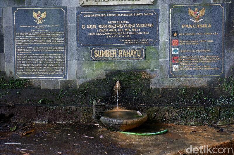 Rowo Bayu adalah danau dan memiliki beberapa mata air. Tempat ini dikaitkan dengan cerita horor KKN di Desa Penari, meski penulisnya membantah (Ardian Fanani/detikcom)