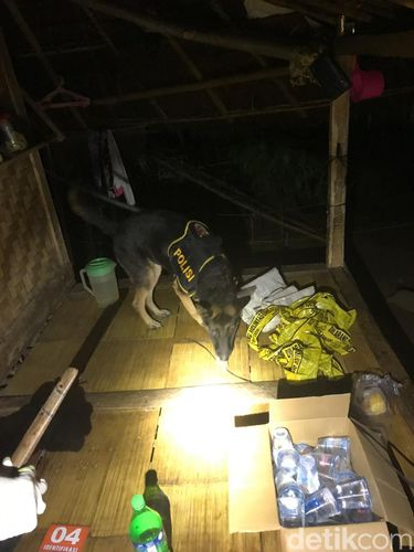 Polisi olah TKP pemerkosaan warga Baduy Luar (Dok ist)