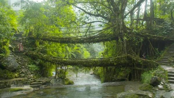 Mawlynnong, yang terletak di Bukit Khasi Timur di timur laut India. Wilayah ini dinobatkan sebagai Desa Terbersih di Asia oleh berbagai media (CNN)