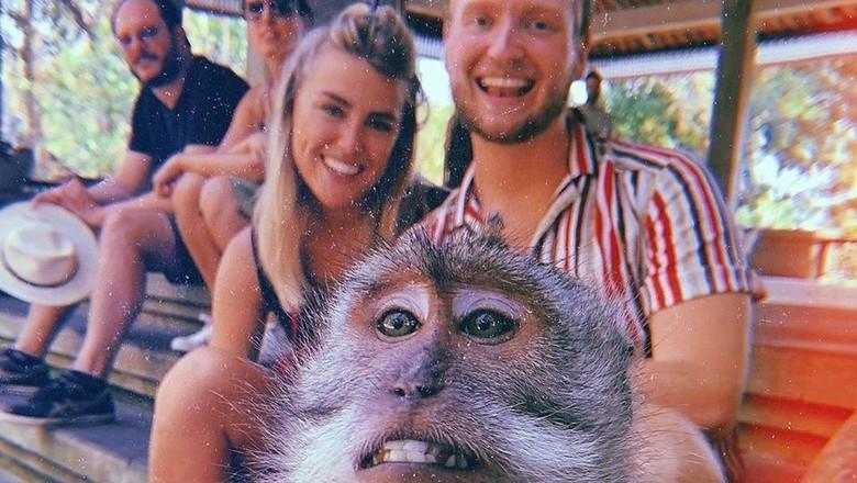 monyet selfie di bali (giewahyudi/Twitter)