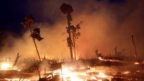 Kebakaran Hutan Amazon, 7 Negara Teken Perjanjian Perlindungan Lembah Sungai