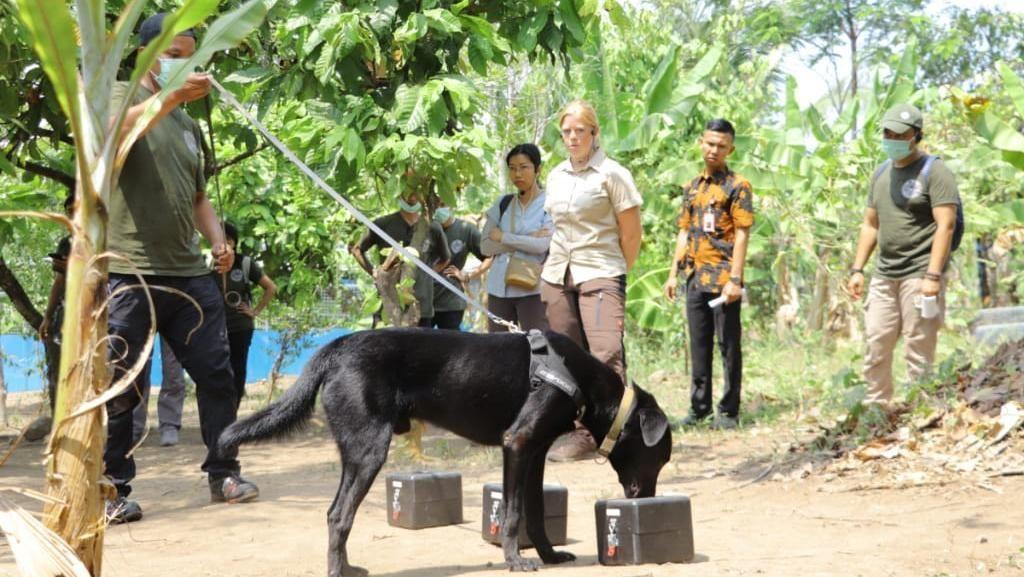 Polda Lampung Punya Anjing K9 Khusus Lacak Penyelundupan Satwa Liar