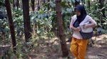 Potret Perjuangan Warga Pekalongan Cari Air Bersih di Hutan Pinus