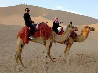 Begini Rasanya Menjelajahi Gurun Pasir Abu Dhabi