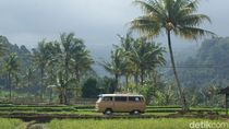 Mobil Tua Tidak Punah di Banyuwangi
