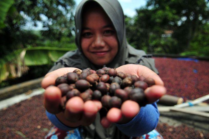 BCA mendukung budidaya kopi dengan meresmikan Doesoen Kopi Sirap di Kecamatan Jambu, Semarang. Acara itu dihadiri Komisaris Independen BCA Cyrillus Harinowo. Istimewa/BCA.