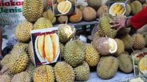 Ragam Durian dan Olahannya Hadir di Pekan Raya Durian