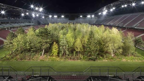 Lapangan itu terletak di dekat Danau Worthersee di negara bagian selatan Austria, Carinthia. Saat ini sudah ada sekitar 300 pohon melapisi stadion (Gerhard Maurer/CNN)