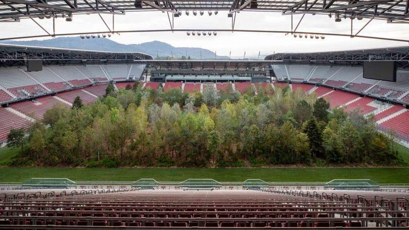 Hutan itu adalah instalasi seni. Idenya sebagai upaya untuk menarik perhatian pada perubahan iklim dan deforestasi (Gerhard Maurer/CNN)
