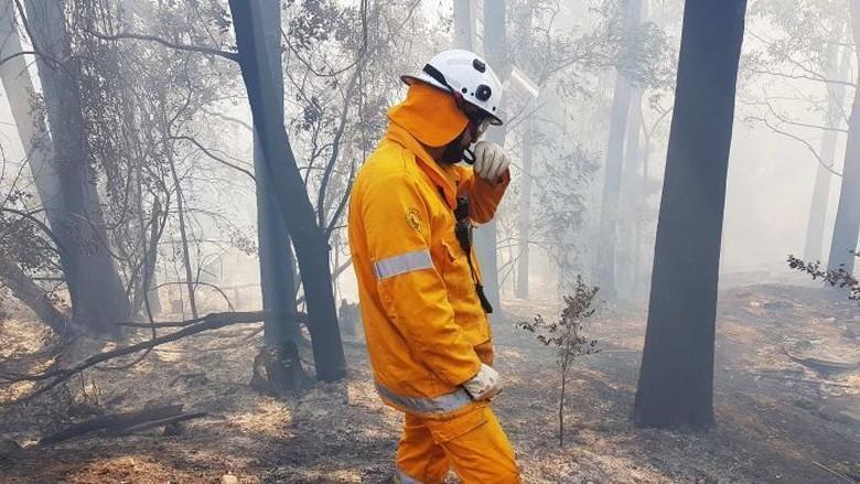 Kebakaran di Queensland Diprediksi Belum Akan Reda Hingga 3 Hari Mendatang