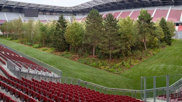 Nama instalasinya For Forest - The Unending Attraction of Nature diluncurkan pada 8 September lalu (Gerhard Maurer/CNN)