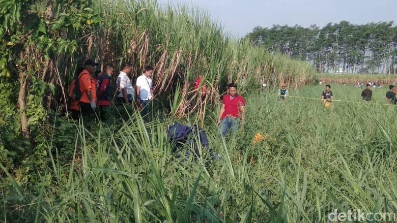 Mayat Pria dengan Luka Tusuk Ditemukan di Ladang Tebu Malang