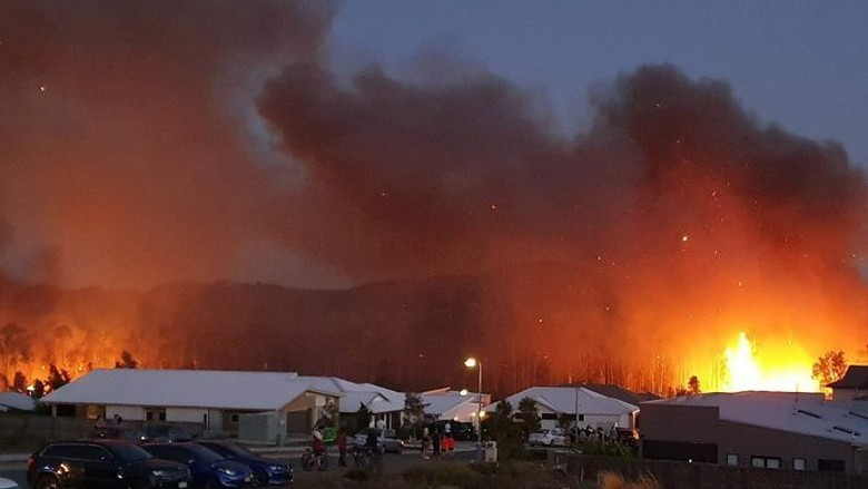 Ratusan Keluarga di Queensland Mengungsi Hindari Kebakaran yang Kian Memburuk