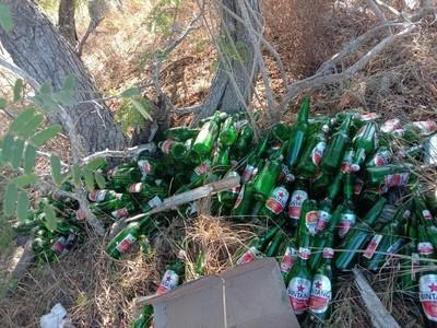 Saat Puluhan Botol Bir Tergeletak Dibuang di Pantai Pink Komodo