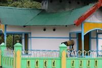 Masjid Patimburak dibangun secara gotong royong oleh warga baik yang memeluk agama Islam maupun Kristen Protestan atau Katolik (Hari Suroto/Balai Arkeologi Papua/Istimewa)