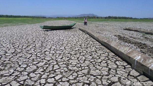 Permukaan Air Susut, Bekas Desa di Dasar Waduk Gajah Mungkur Muncul