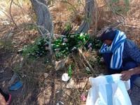 Sampah ini ditemukan kemarin, (09/09), rangerTN Komodo dan Masyarakat Peduli Sampah Desa Komodo melakukan bersih sampah di Pantai Pink dan menemukan tumpukan sampah itu (evanstevano/Komodo National Park-Indonesia/Instagram/Istimewa)