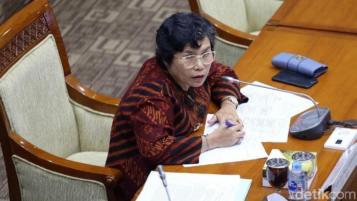 Lili Pintauli Siregar Jalani Uji Capim KPK di DPR. (Agung Pambudhy/detikcom)