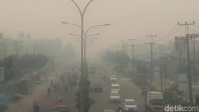 Kabut Asap Bikin Kesal Warga Riau hingga Investor