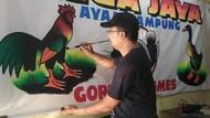 Nestapa Pedagang Pecel Lele: Terlilit Utang, 500 Warung Bangkrut