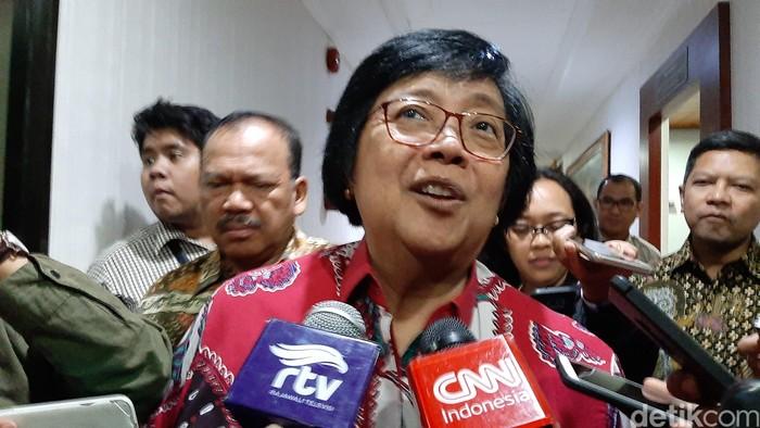 Menteri LHK Siti Nurbaya (Lisye Sri Rahayu/detikcom)