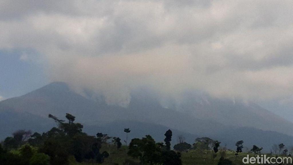 Ini Dampak Langsung Akibat Kebakaran Besar di Gunung Merbabu