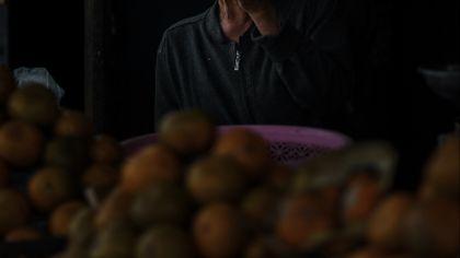 pedagang jeruk kintamani