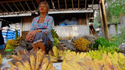 nenek penjual pisang