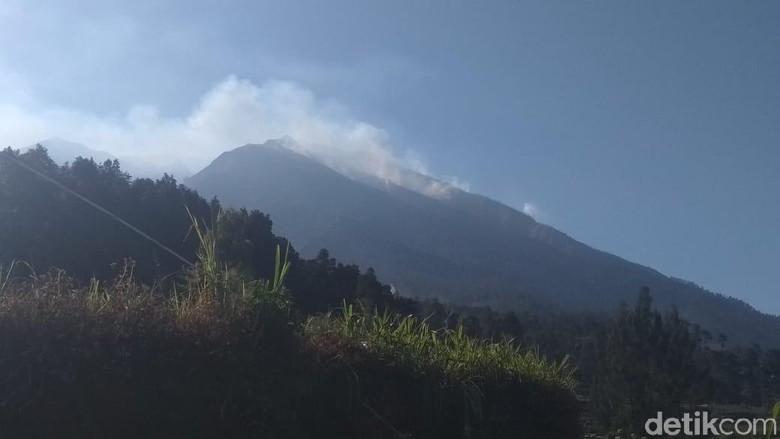 Kebakaran Hutan Lereng Gunung Merbabu Meluas di 3 Kabupaten