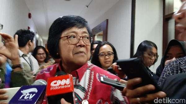 Menteri LHK: Kualitas Udara di Sumatera-Kalimantan Lebih Baik dari Kemarin