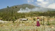 Penampakan Kepulan Asap Kebakaran Gunung Slamet