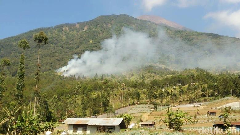 Kebakaran Hutan di Lereng Gunung Slamet Capai 14,3 Hektare