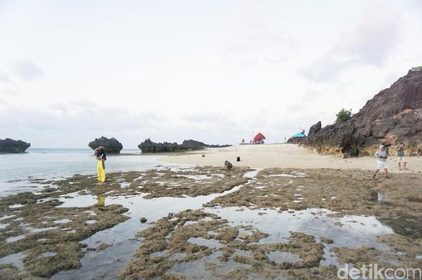 Selamat jatuh hati dengan pantai-pantai eksotis di Rote! (Afif Farhan/detikcom)