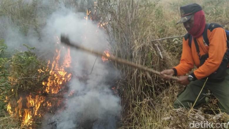 Masih Terdeteksi 2 Titik Api di Kebakaran Hutan Gunung Merbabu