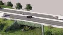 BKSDA Identifikasi Tol Sigli-Banda Aceh yang Punya Underpass untuk Gajah