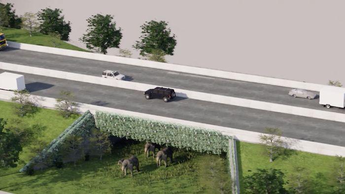 Ilustrasi underpass khusus gajah/Foto: Hutama Karya