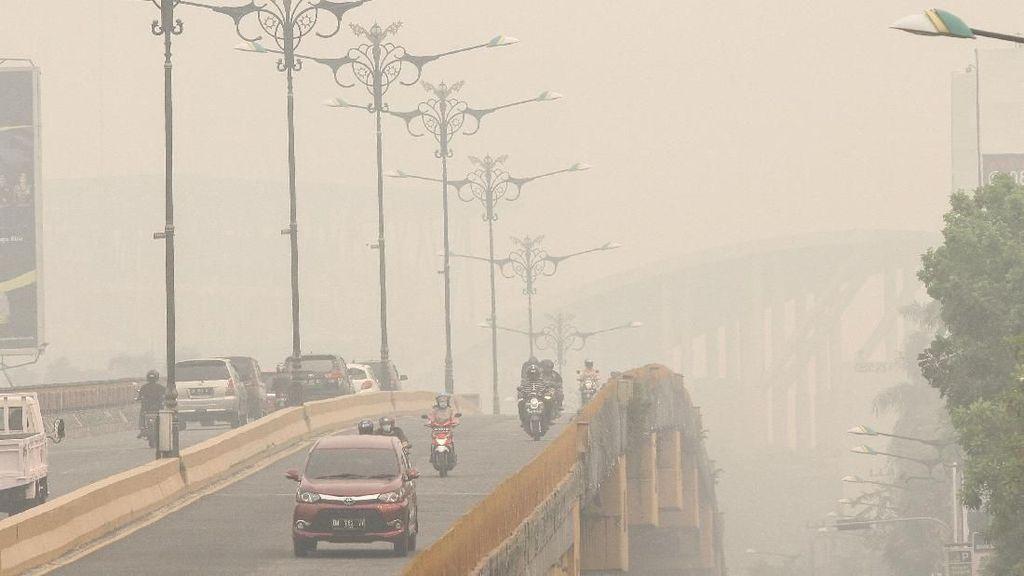 Viral Video Kabut Asap di Kalteng, Netizen Mengeluh Pusing dan Sesak
