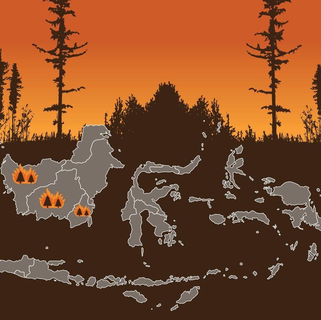 Data-data Tentang Kebakaran Hutan di Kalimantan