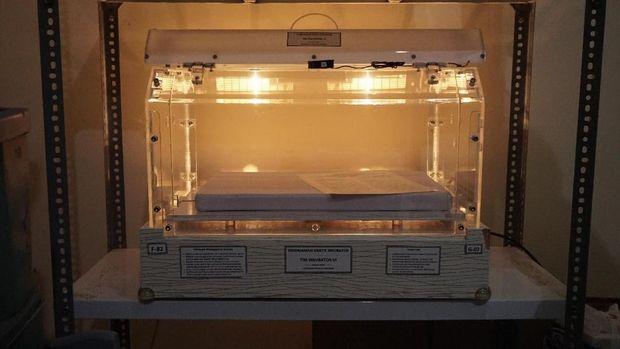 Inkubator gratis yang dipinjamkan.