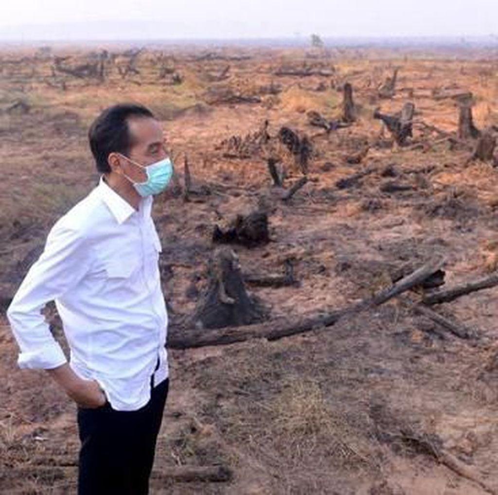 Kelalaian Kebakaran Hutan Harus Disudahi