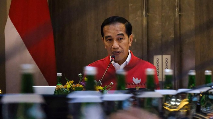 Jokowi di Riau. (Foto: Andhika Prasetia/detikcom)