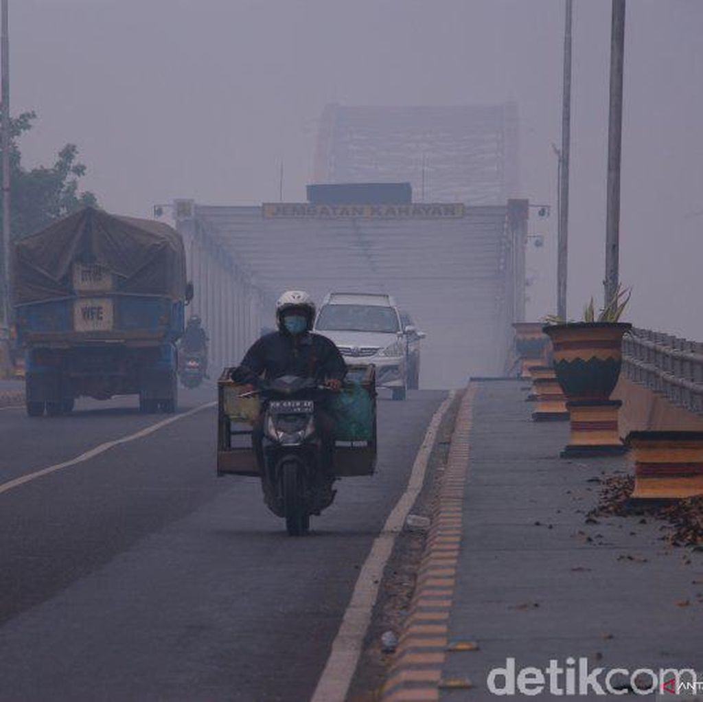 Kabut Asap Makin Parah di Palangka Raya, Jarang Pandang Hanya 400 Meter