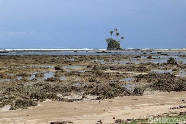 Layaknya di film animasi, pulau ini berada menjorok dari bibir pantai dengan sejumlah pohon kelapa di atasnya (Randy/detikcom)