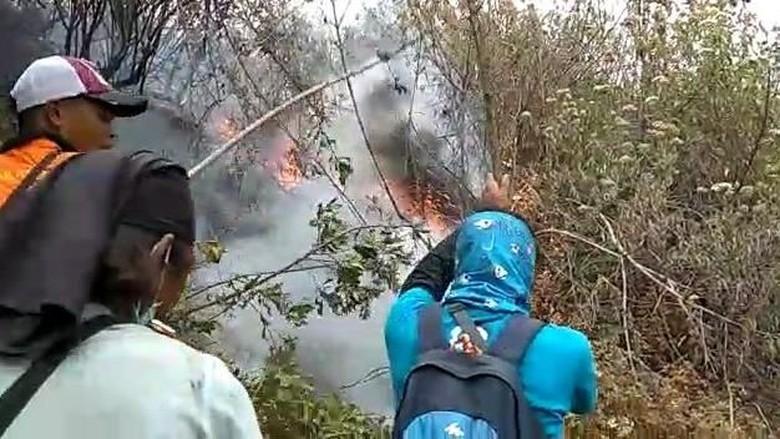 Kebakaran di Gunung Merbabu, Kawasan Edelweis Ikut Hangus Terbakar