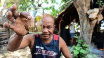 Sopi, Minuman Keras dengan Kearifan Lokal Rote